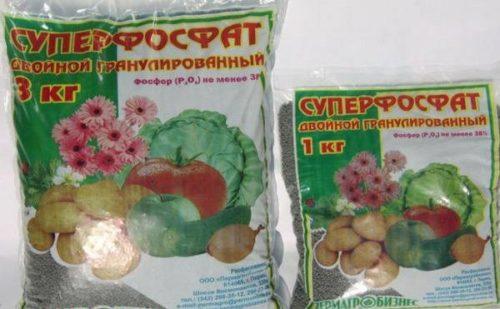 Два пакета разного веса с двойным суперфосфатом для внесения под яблоню после сбора плодов