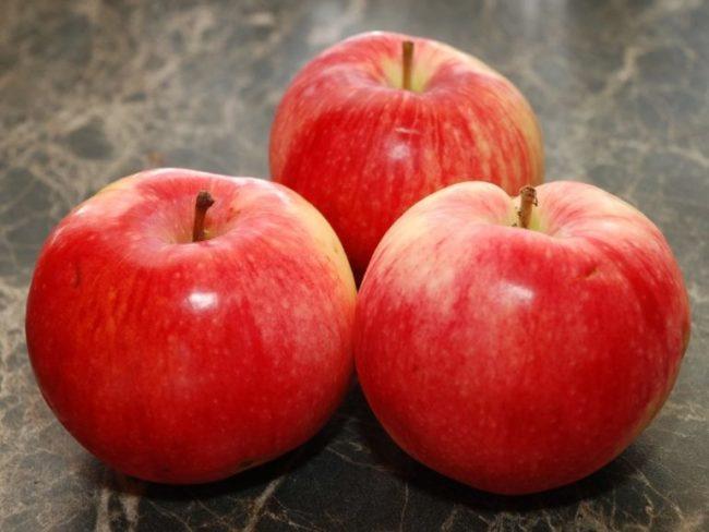 Три яблока среднего размера сорта Услада отечественной селекции