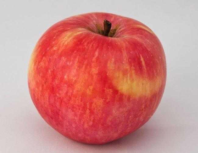 Крупное яблоко сорта Услада с малиново-красным покровным окрасом