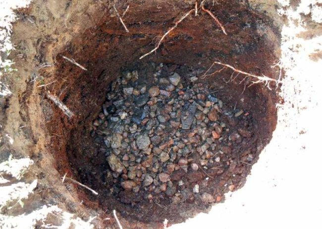 Камень и щебень на дне посадочной ямы для яблони