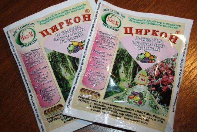 Два пакетика с препаратом Циркон для профилактической обработки яблони