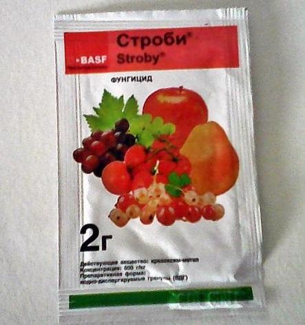Пакет с препаратом Строби массой в два грамма для обработки плодовых культур