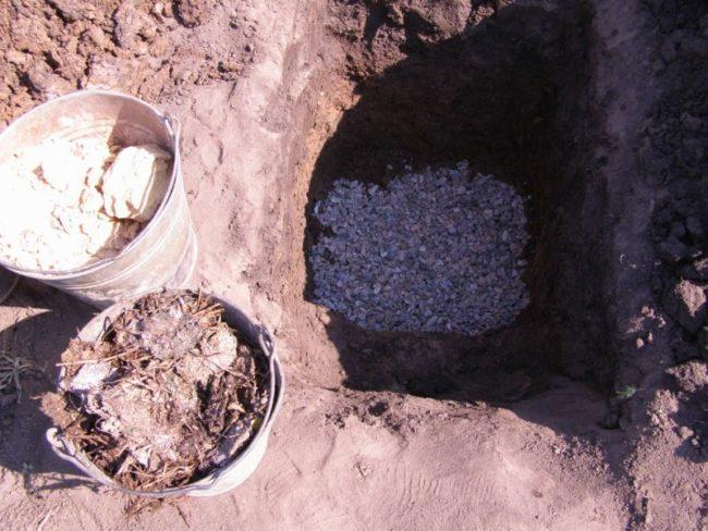 Мелкая галька на дне посадочной ямы для яблоневого саженца