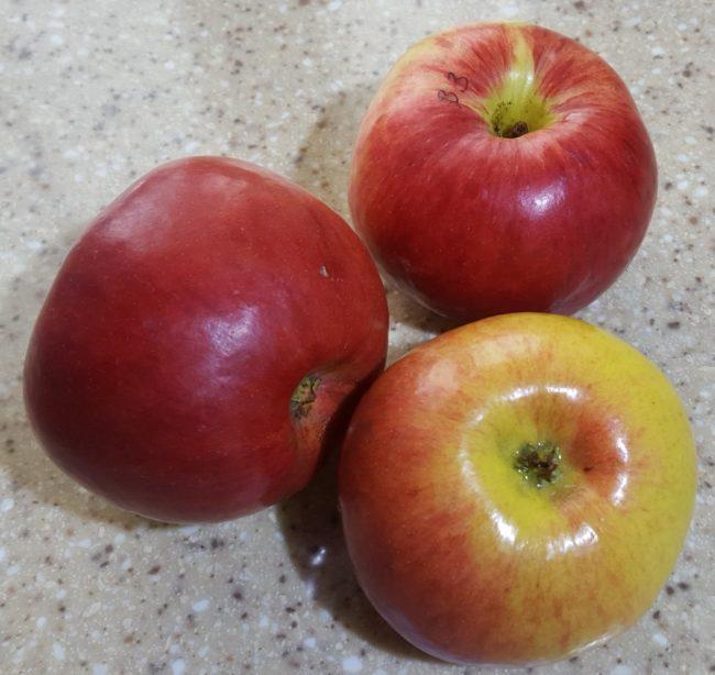 Красные яблоки с блестящей кожицей сорта Вологодское зимнее