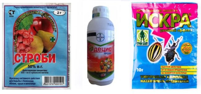 Химические препараты для весенней обработки яблонь от вредных насекомых
