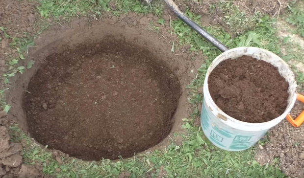 Насыпание холмика из плодородной земли в яме для саженца яблони