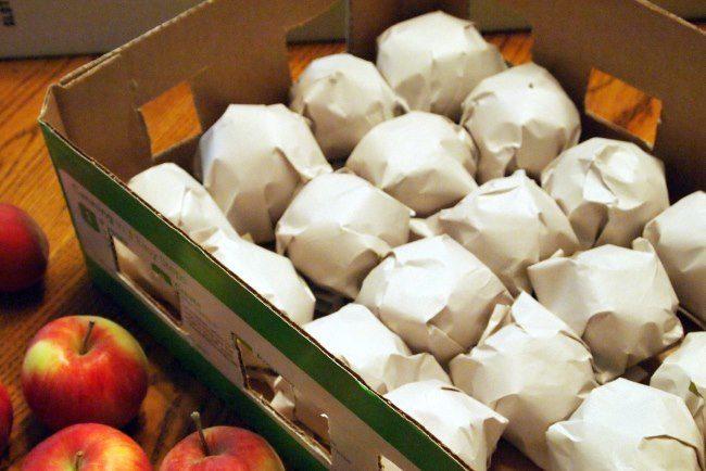 Хранения урожая яблок в бумаге в условиях городской квартиры