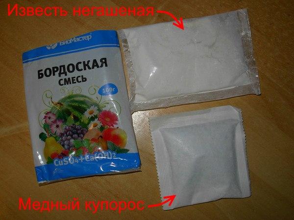 Негашеная известь и медный купорос в пакетиках для приготовления бордоской жидкости