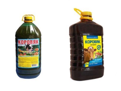 Две пластиковые емкости с концентратом коровяка для подготовки жидкой весенней подкормки