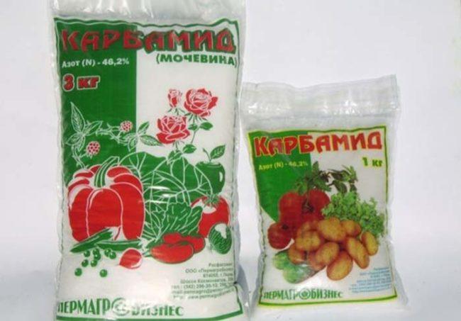 Два разных по величине пакета с карбамидом для подкормки яблони в начале лета