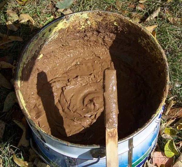 Металлическая емкость с раствором глины для защиты ствола от мышей и других грызунов