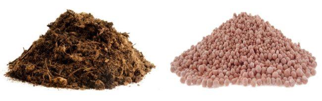Разновидности удобрений для весенней подкормки плодового сада