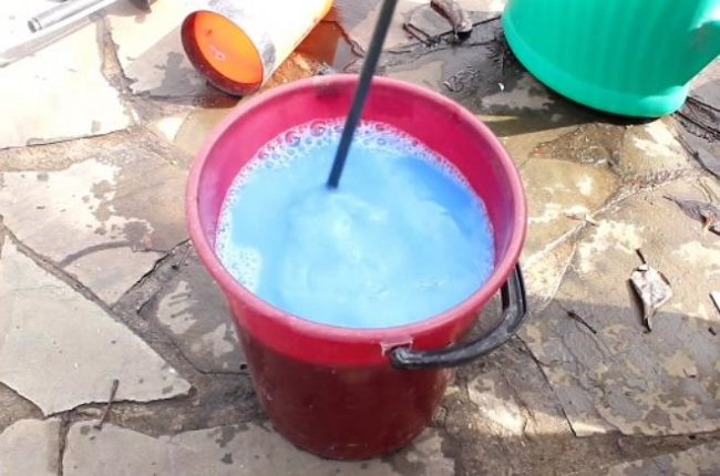 Разведение бордоской жидкости в пластиковом ведре для весеннего опрыскивания сливы