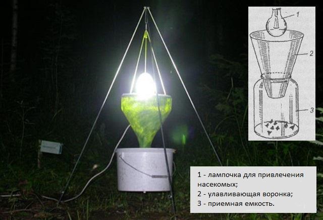 Фото и схема устройства световой ловушки для майских жуков