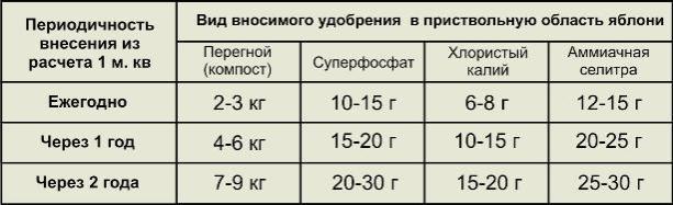 Периодичность и количество удобрений для внесения в приствольный круг яблони