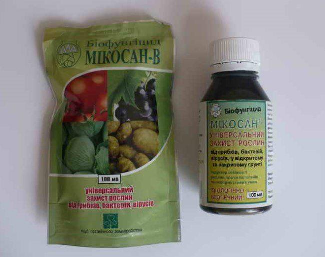 Внешний вид упаковки и пузырька с биопрепаратом Микосин от плодовой гнили