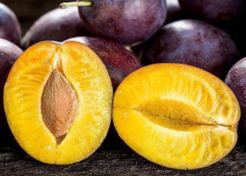 Внешний вид мякоти плода сливы отечественного сорта Фиолетовая