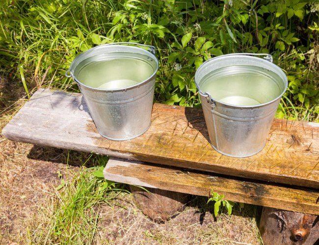 Два оцинкованных ведра с раствором мочевины и сульфата калия для летней подкормки