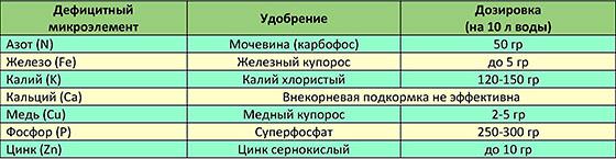 Таблица с рекомендациями по внекорневым подкормкам сливы