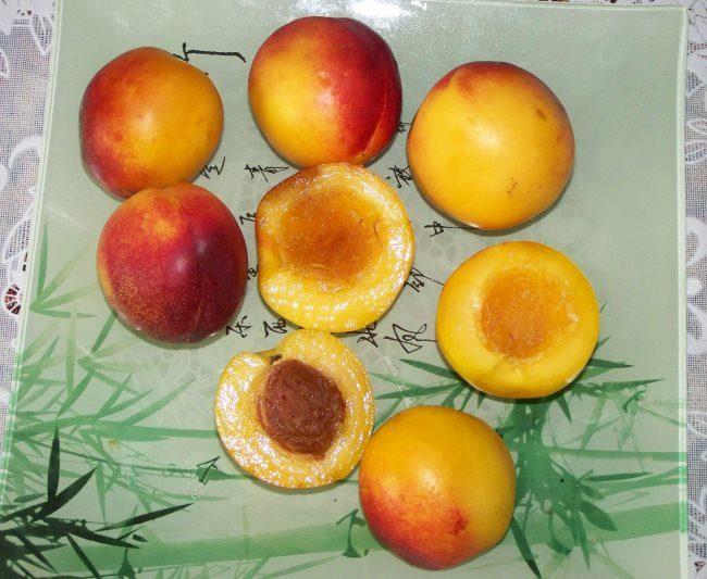Похожие на абрикосы крупные плоды гибрида априум и косточка с мякотью