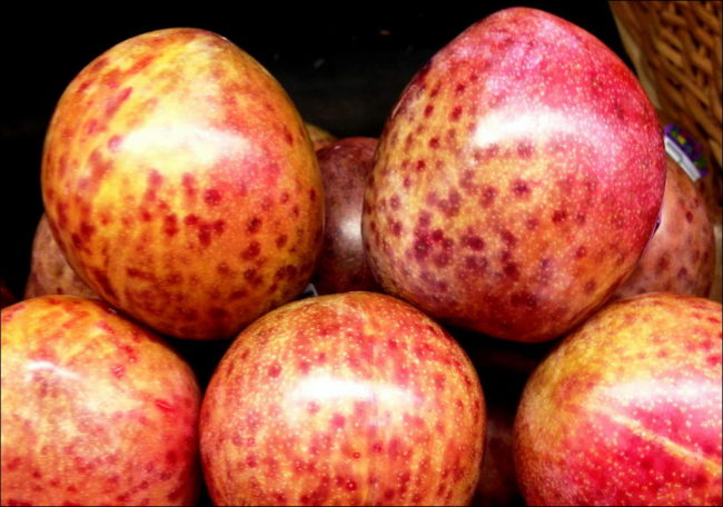 Пятнистая окраска спелых плодов гибридного плумкота Дэппл дэнди