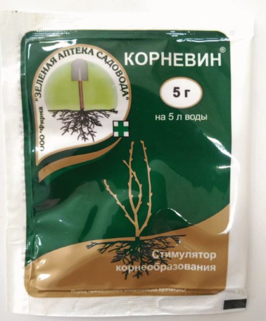 Пакет с порошкообразным препаратом Корневин для улучшения роста корневой системы саженцев