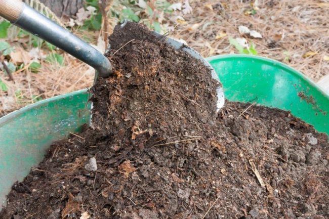 Перемешивание лопатой перегноя с опавшей листвой в старой ванне