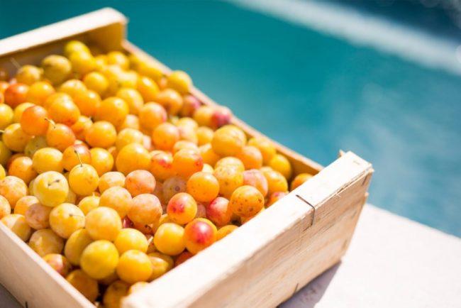 Деревянный ящик с плодами желтой сливы для продажи на рынке