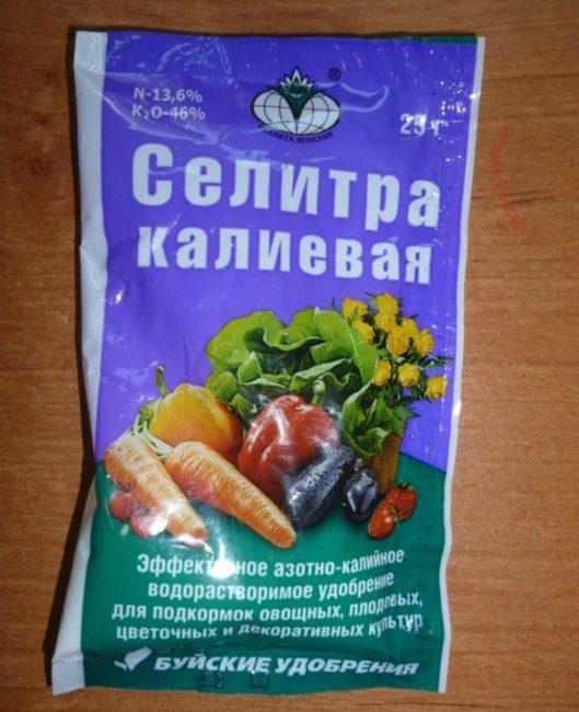 Небольшой пакетик селитры калиевой для летней подкормки ежевики