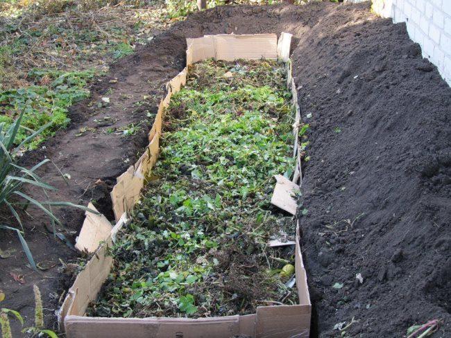 Подготовка ленивой грядки для выращивания огурцов в открытом грунте