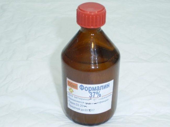 Стеклянный пузырек с формалином для дезинфекции теплицы от грибка