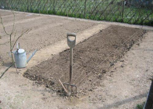 Весенняя подготовка грядки для посадки огурцов семенами
