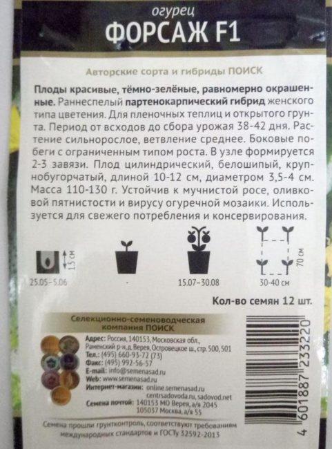 Инструкция по применению на обратной стороне пакета с семенами огурцов сорта Форсаж