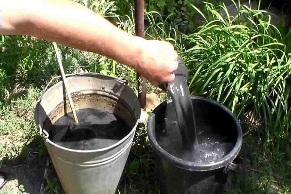 Разведение настоя золы в пластиковом ведре перед внесением под огурцы