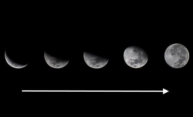 Схема периода растущей луны для выбора срока посадки огурцов в открытый грунт