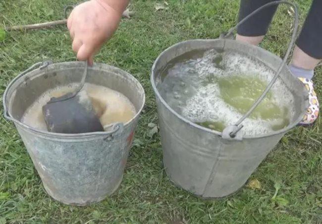 Разведение закваски на основе хлеба и дрожжей перед внесением под огурцы