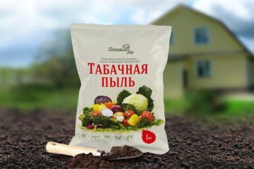Пакет с табачной пылью для уничтожения паутинного клеща на огурцах в теплице