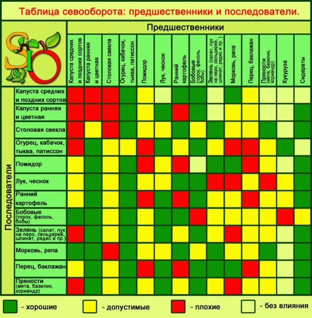 Таблица севооборота огородных культур для частного хозяйства