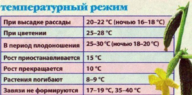 Таблица с рекомендуемыми температурными режимами выращивания огурцов