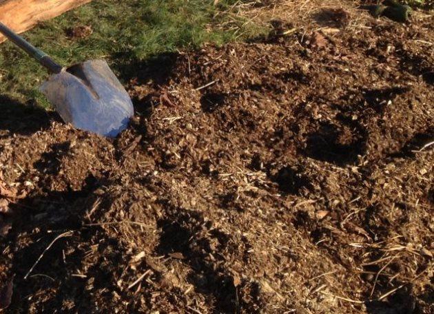 Внесение питательной смеси на грядку для огурцов в открытом грунте