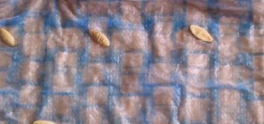 Замачивание семян огурцов в пелёнке