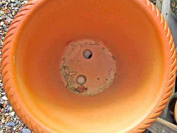Глиняный горшок для драцены с двумя дренажными отверстиями