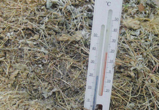 Измерение температуры почвы и воздуха с помощью двойного термометра