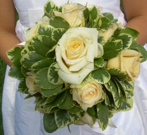 Свадебный букет с нежными розами и листьями Белые цветки питтоспорума тобира