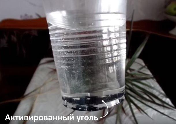 Активированный уголь на дне пластикового стаканчика с дождевой водой