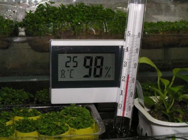 Показатели влажности и температуры на приборах контроля в теплице с огурцами