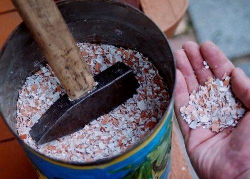 Измельченная яичная скорлупа с высоким содержанием калия для подкормки драцены