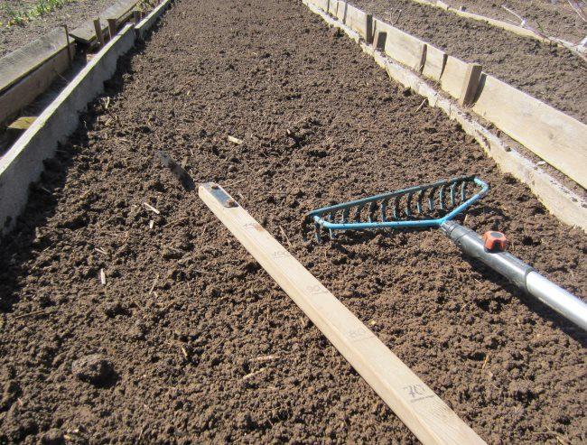 Перекопанная грядка с рыхлой землей перед посадкой сидератов