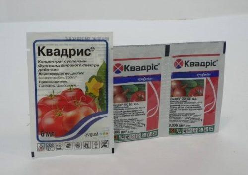 Системный фунгицид Квадрис для профилактики и лечения болезней комнатных цветов