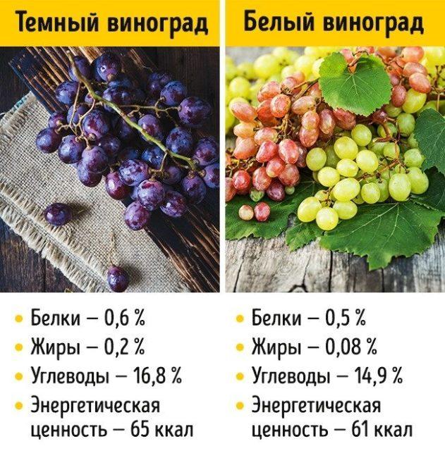 Пищевая и энергетическая ценность черного и зеленого винограда